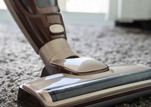 upright vacuum cleaning pet hair from carpet